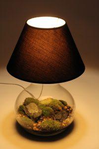 lampa terrarium rybkadesign